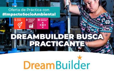 DreamBuilder busca practicante